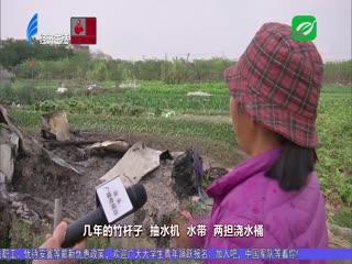 田头寮被烧 农具毁于一旦 2021-02-25